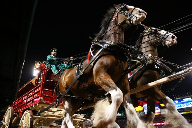 Budweiser Clydesdales to Kickoff Wings Over North Georgia Opening ...